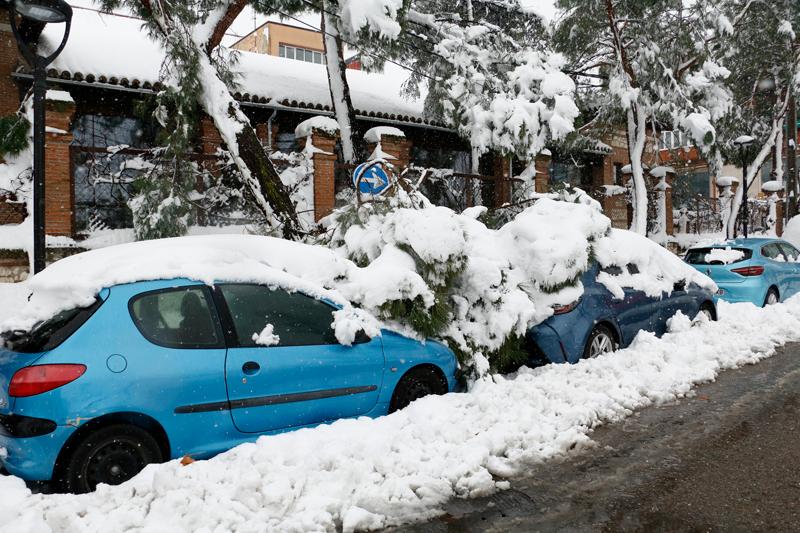 ¿Qué daños nos ha dejado el temporal Filomena?